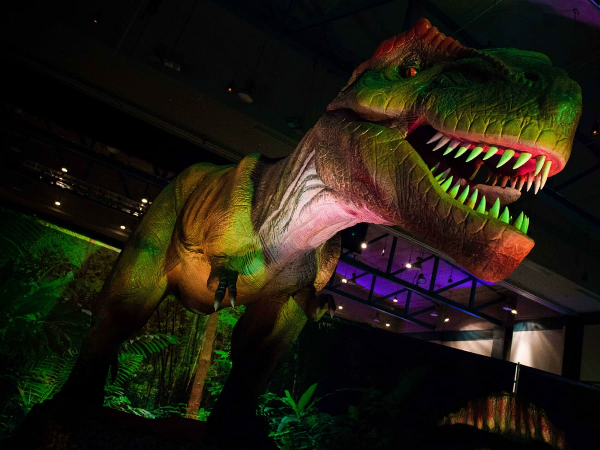 VStar Entertainment presents Discover the Dinosaurs Unleashed