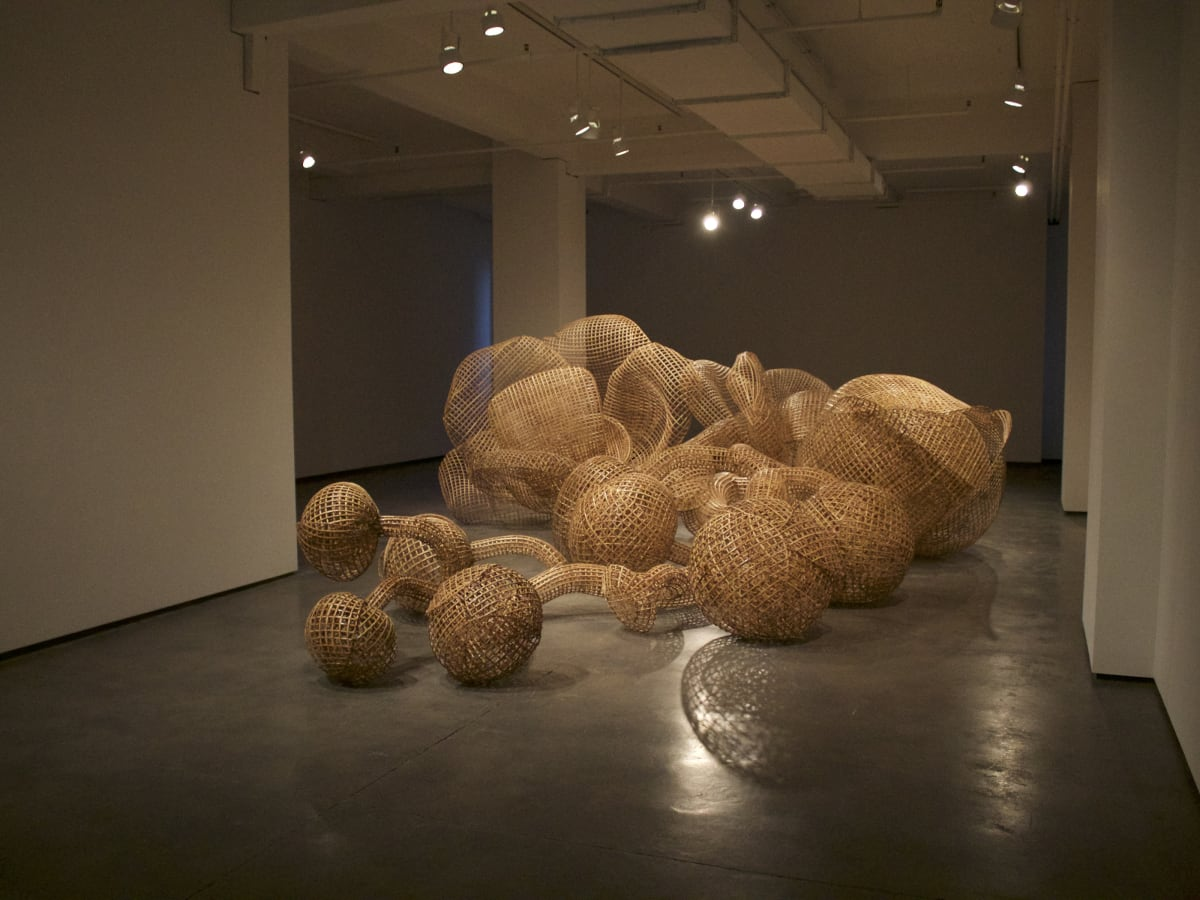 Crow Collection of Asian Art presents Hidden Nature Sopheap Pich