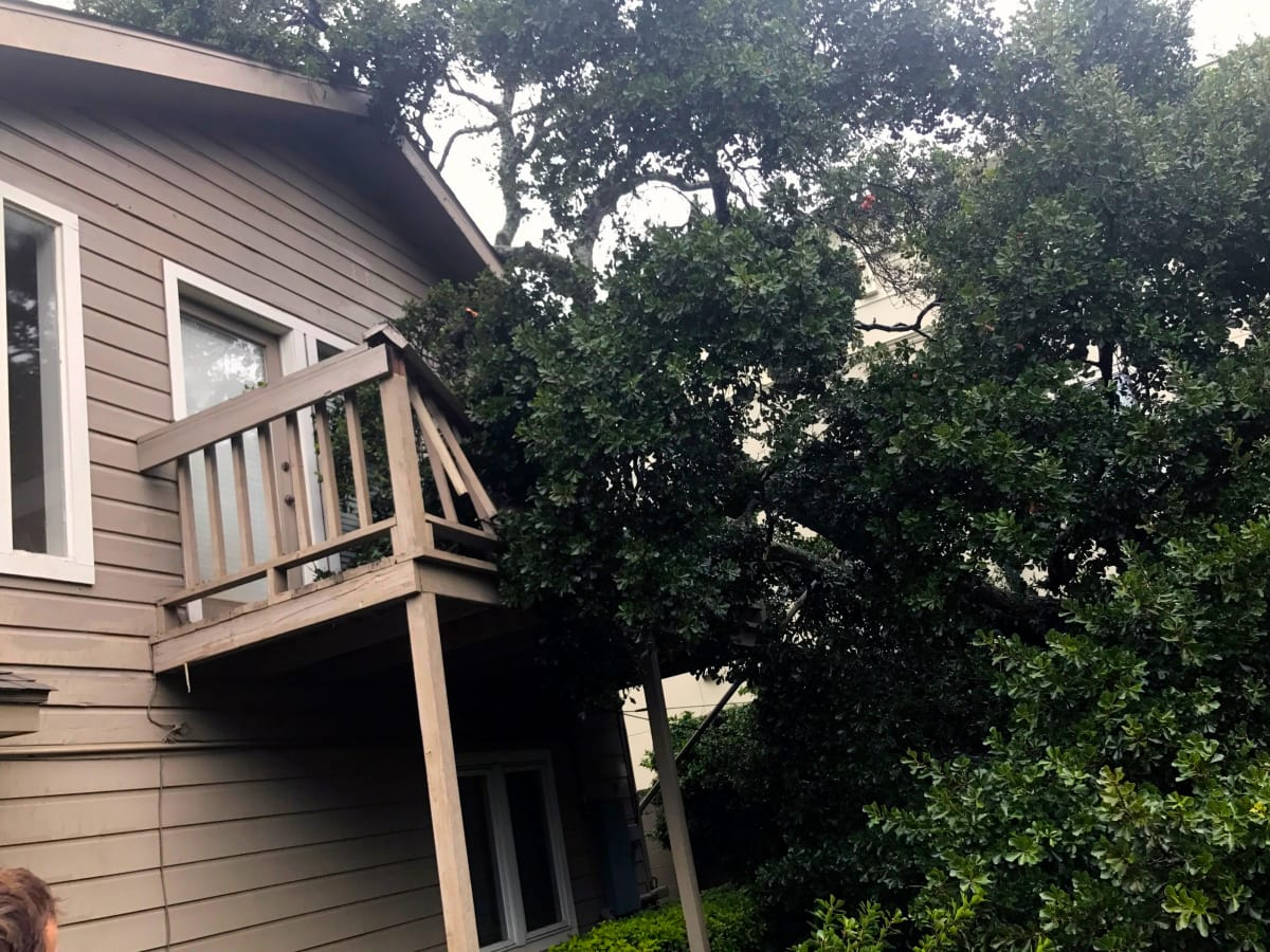 Houston, Hurricane Harvey, flood photos, Afton oaks