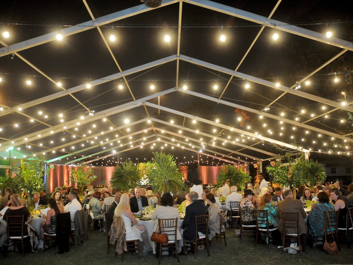 Party Under the Stars/Houston Polo Club Nature Conservancy Gala