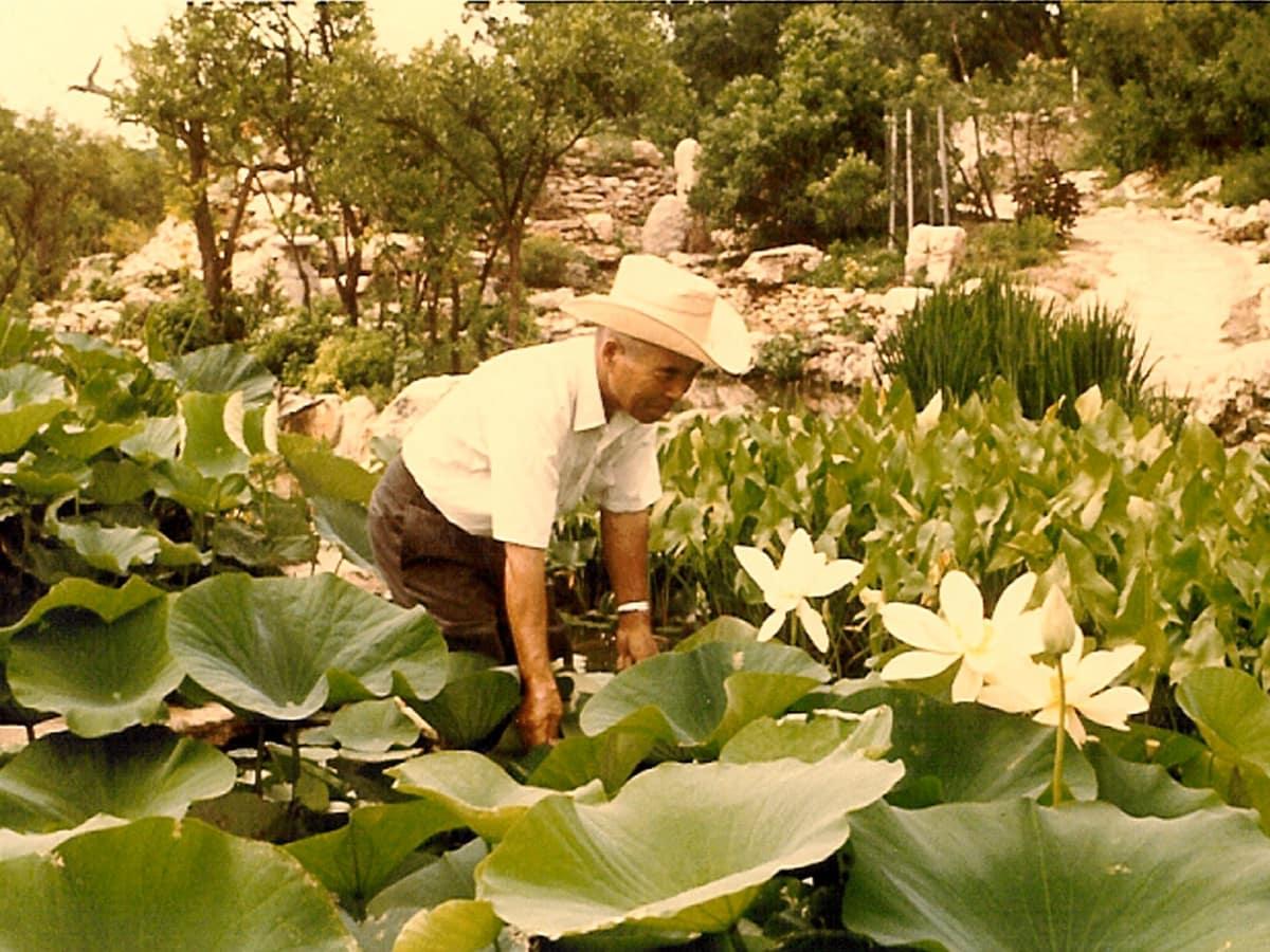 Isamu Taniguchi at his Japanese Gardens