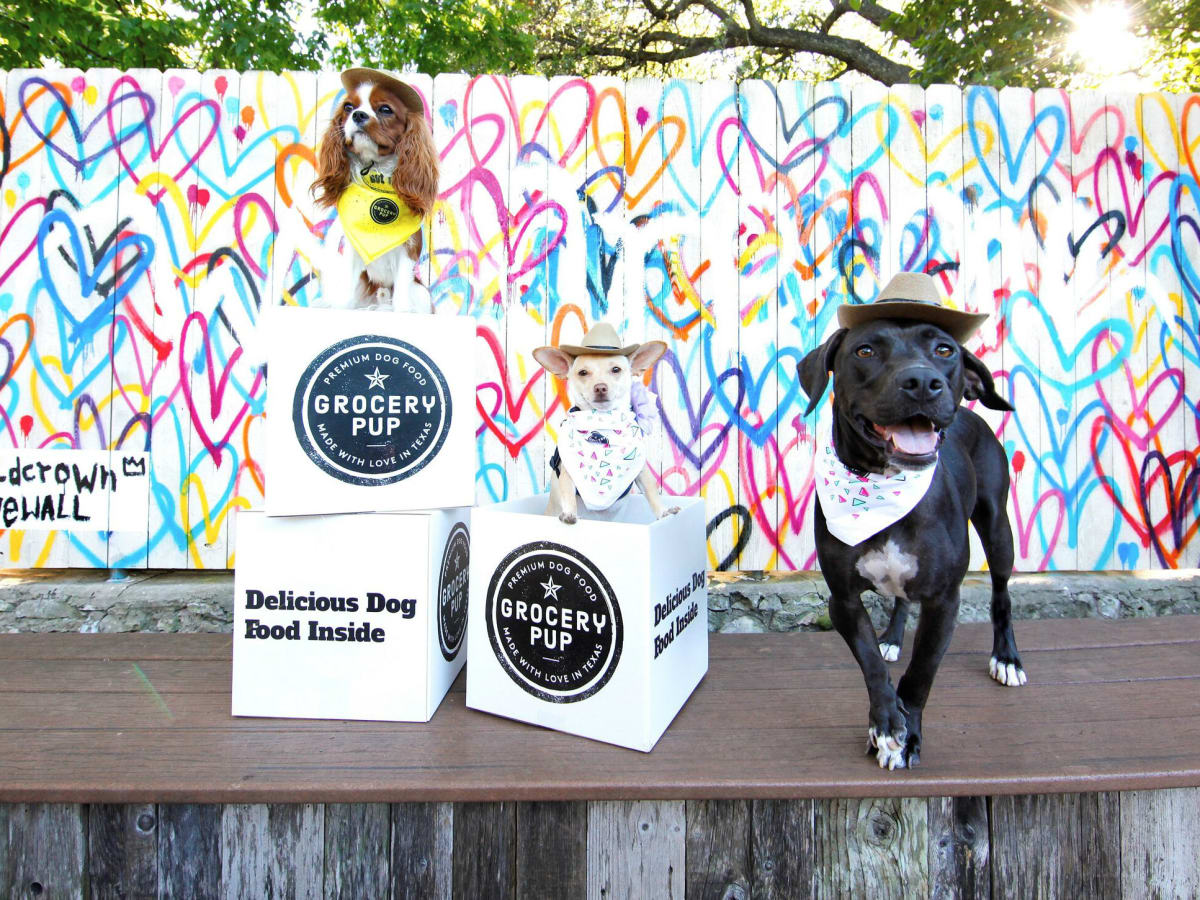 Austin Startup Delivers Top Quality Dog Food Directly To Your Door