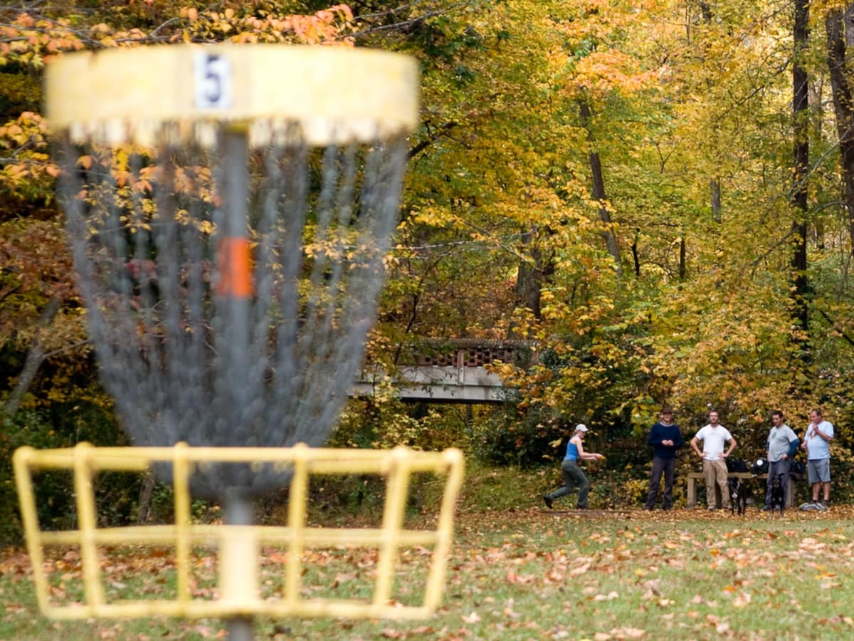 News_Peter Barnes_Disc golf_basket_players_in background
