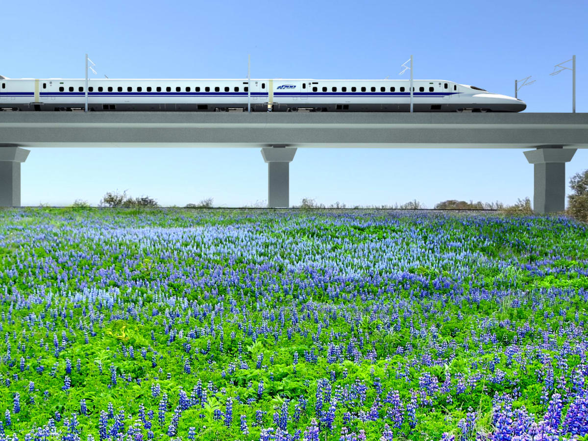 Houston high speed train rendering bluebonnets