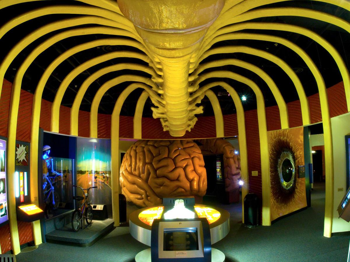 Places_A&E_Health Museum_interior