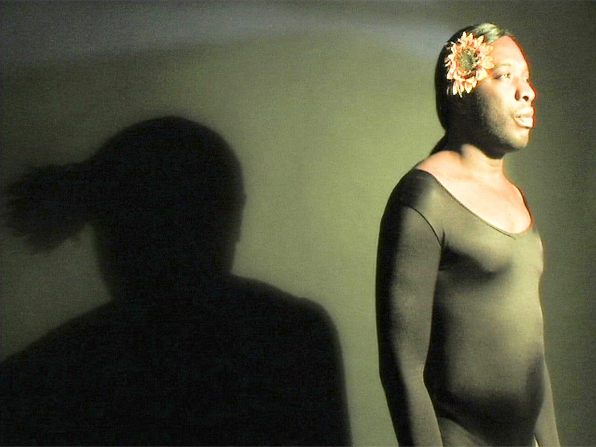 News_FotoFest 2010_Medianation_Kalup Linzy_Sweetberry Sonnet_Remixed_2008