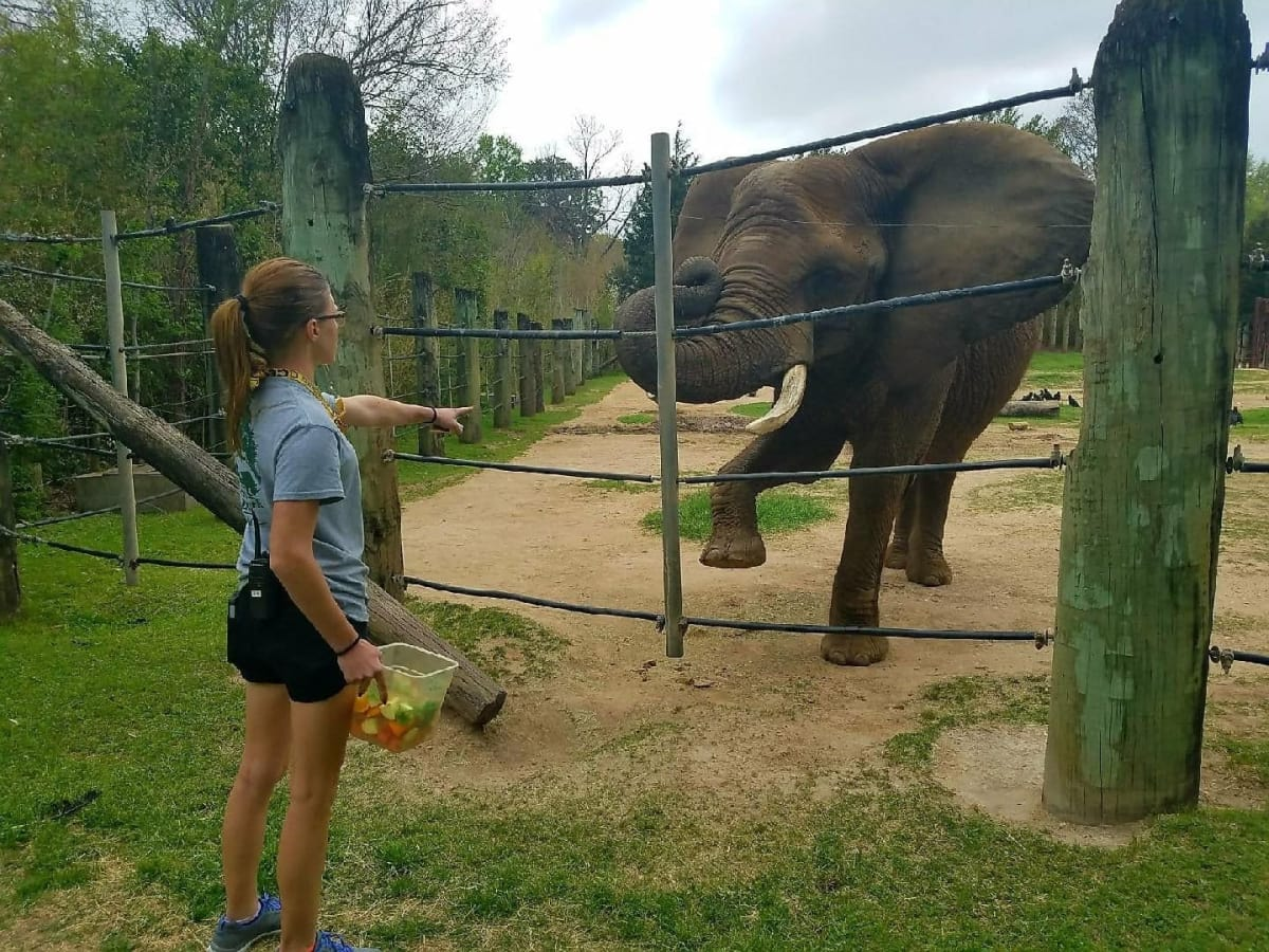 Cameron Park Zoo Waco