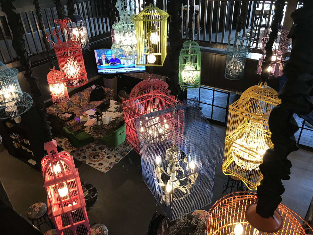 Present Company bird cages