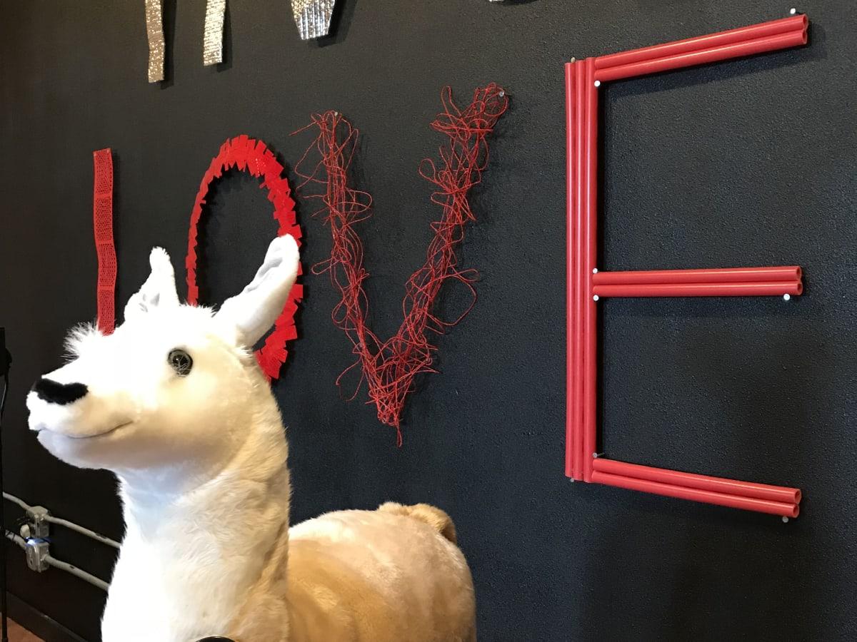 Love in Motion Lola the llama
