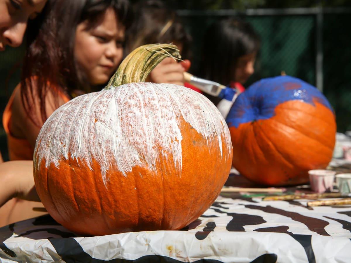 Halloween pumpkin painting San Antonio