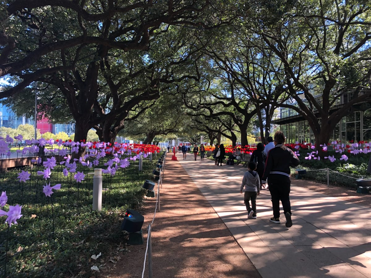 Discovery Green: GUST day