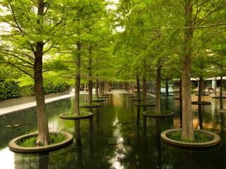 Fountain Place in Dallas