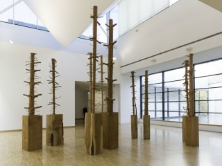Nasher Sculpture Center presents Giuseppe Penone