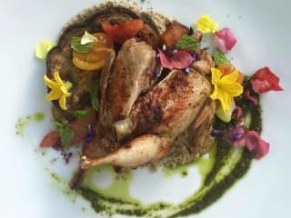 Alchemy Kombucha and Culture San Antonio restaurant food dish quail