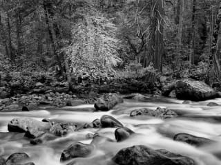 Sun to Moon Gallery presents <i>National Park Service @ 100: A Photographic Celebration</i>