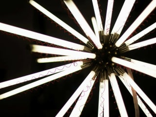 Sicardi Gallery presents Divergent