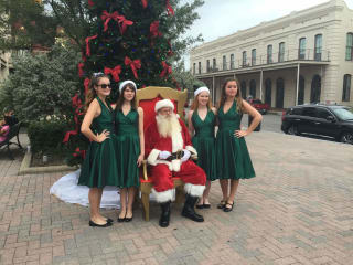 Galveston Holiday in the Park