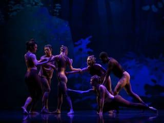 Texas Theatre and Dance presents <i>Ears, Eyes + Feet</i>