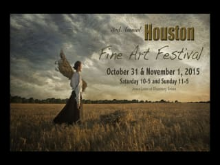 3rd Annual Houston Fine Art Festival
