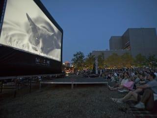 Video Association of Dallas and Dallas VideoFest present Internet Cat Video Festival