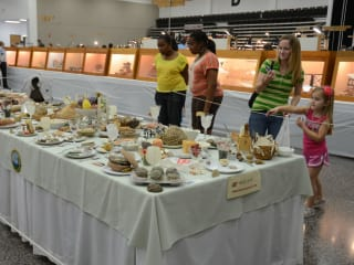 39th Annual Clear Lake Jewelry, Gem and Mineral Show