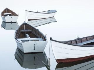Rowboats 2015
