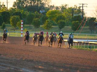Lone Star Park Horse Races