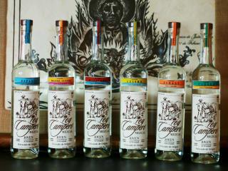 Rey Campero mezcal Mexio Mexican lineup bottles