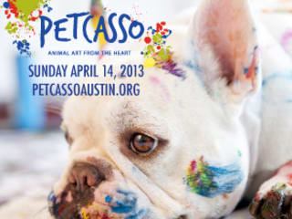 Austin Photo_Event_Petcasso
