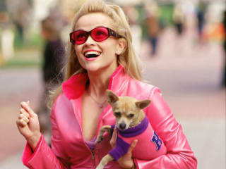 Austin photo set: events_ryan_girlie night_legally blonde_april 2013_reese witherspoon