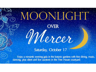 Harris County Precinct 4 Moonlight Over Mercer: Dine, Dance, and Donate