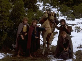 hobbits from the Lord of the Rings Frodo Samwise Merry and Pippin