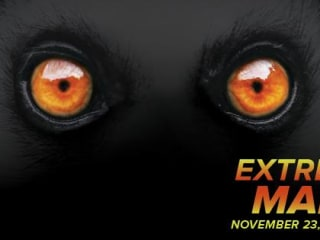 photo for Extreme Mammals at Bullock Museum