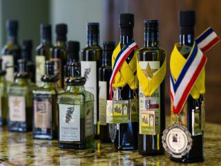 bottles of olive oil for Texas Olive Festival