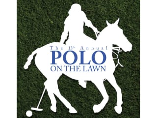 Polo on the Lawn
