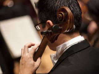 Houston Symphony presents ExxonMobil Summer Symphony Nights 2014