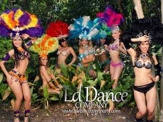 "Houston Brazilian Carnaval 2015 ""Carnaval of Colors"""