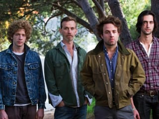Dawes in the forest