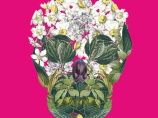 Austin opera_Don Giovanni_skull_2015
