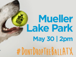 Austin Animal Center_Don't Drop the Ball ATX_May 2015