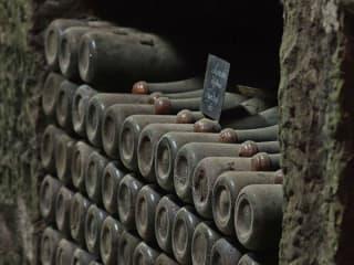 Duchman Family Winery presents Flashback Friday Tasting