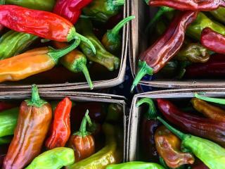 Good Local Markets presents V Market Vegan Pop-Up
