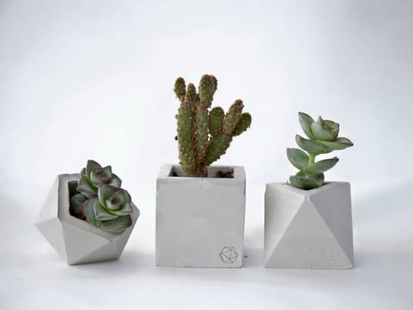 Planters from Concrete Geometric at Birchwood