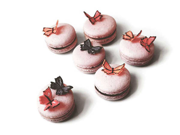 We the Birds French macarons