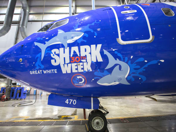 Southwest Airlines Shark Week jets