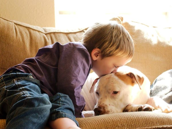 Little boy kissing a dog