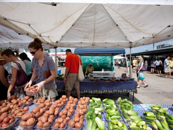 Urban Harvest Farmers Market booths