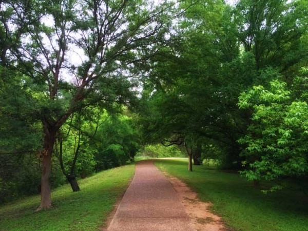 Shoal Creek Hike and Bike Trail