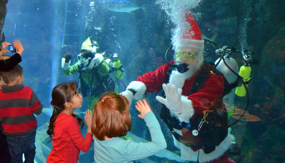 Kemah Aquarium presents Breakfast with Santa - Event -CultureMap Houston