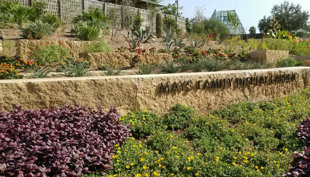 San Antonio Botanical Garden blossoms with grand reopening ...